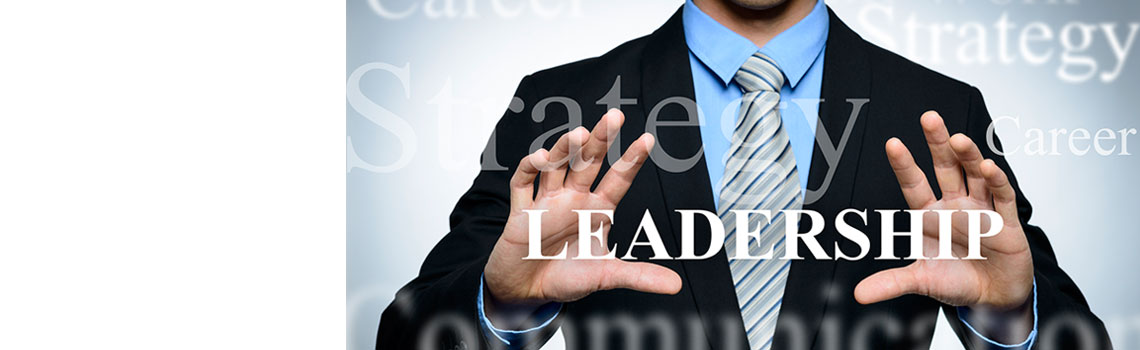 Leadership Strategy & Programs